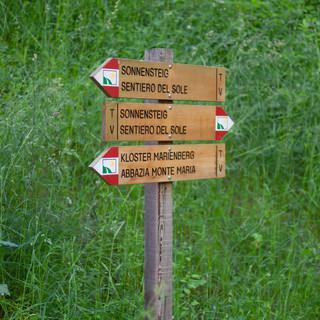 Wandern im Vinschgau