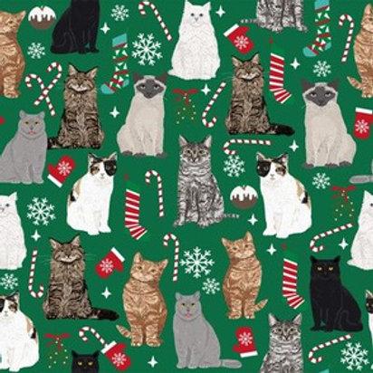 Holiday Kittens