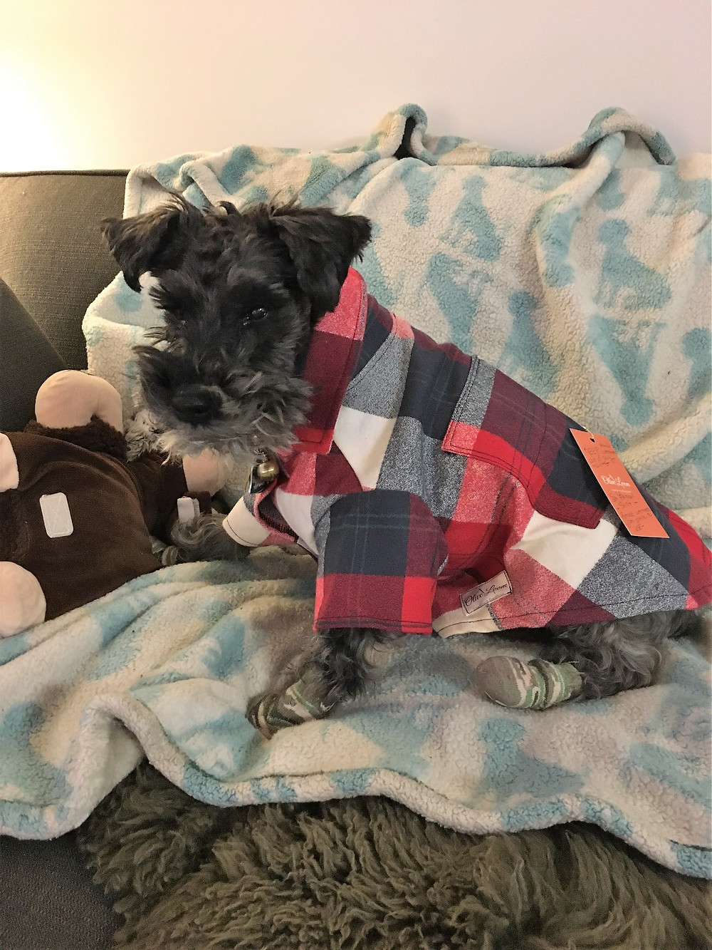 flannel dog shirt with pockets