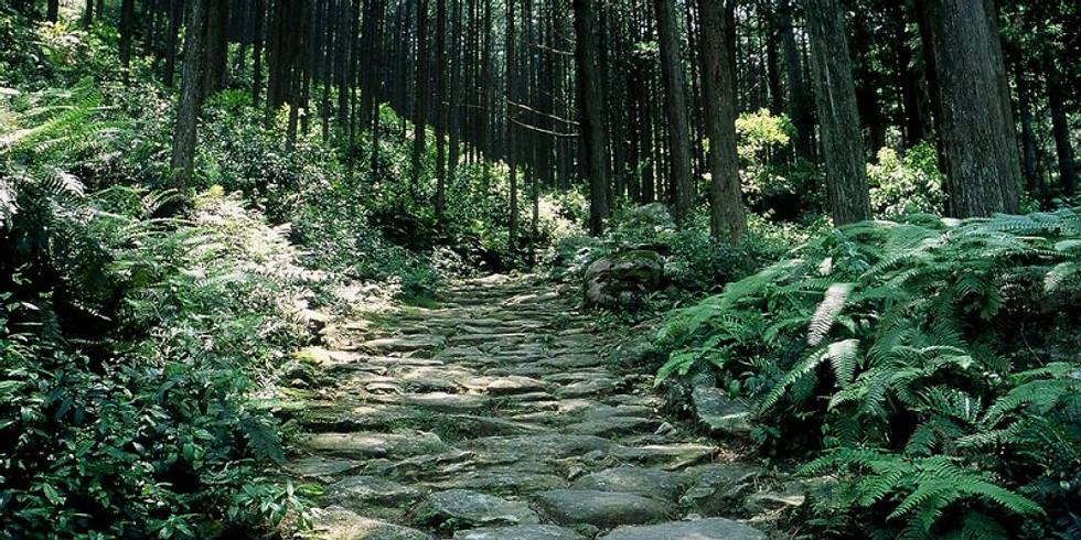 熊野古道 馬越峠(催行決定)