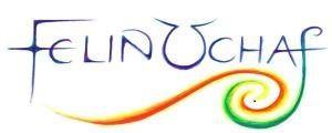 felin uchaf logo.jpg