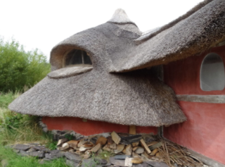 Roundhouse thatch curves