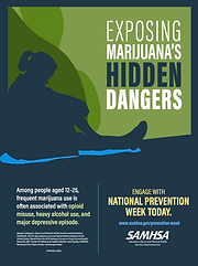 Prevention Illicit Drug Use & Youth Maij
