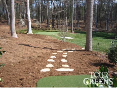Yard Golfing Green