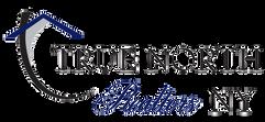 True North Realtors Logo TRANSPARENT.png