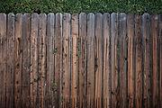 pexels-photo-113726.jpeg