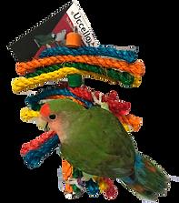 bird toys.png