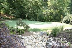 Backyard Golf Practice