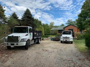 Guzman Tree Removal - work trucks