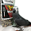 Thumbnail: Uccello Large Parrot Power Food - PLATINUM SEAL