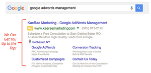 Google Ads - Google Expert - Google Ads Management