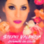 stefalbumcoverfinal2_1600x1600.jpg