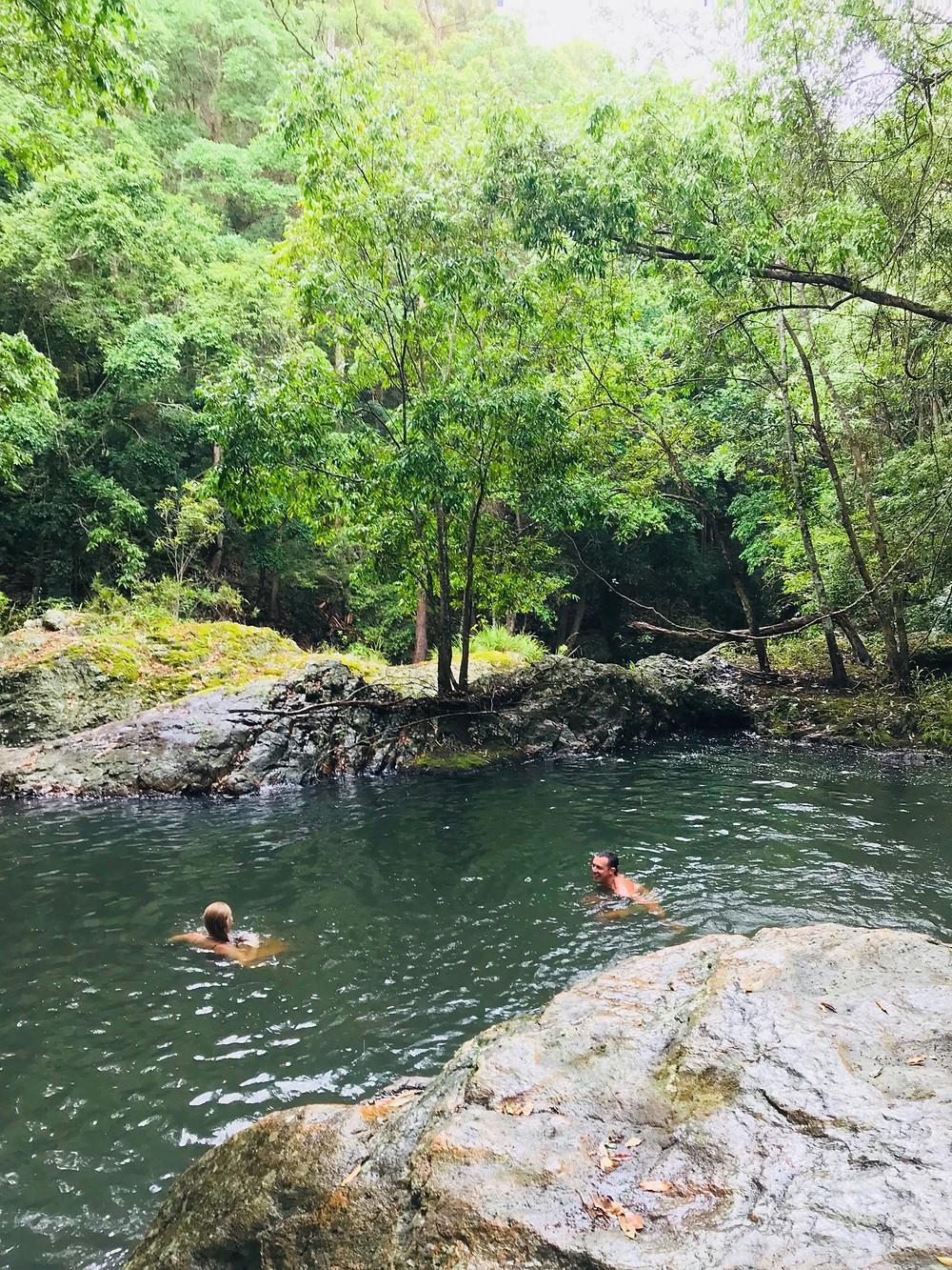 The Secret Swimming Pool of Kondalilla Falls