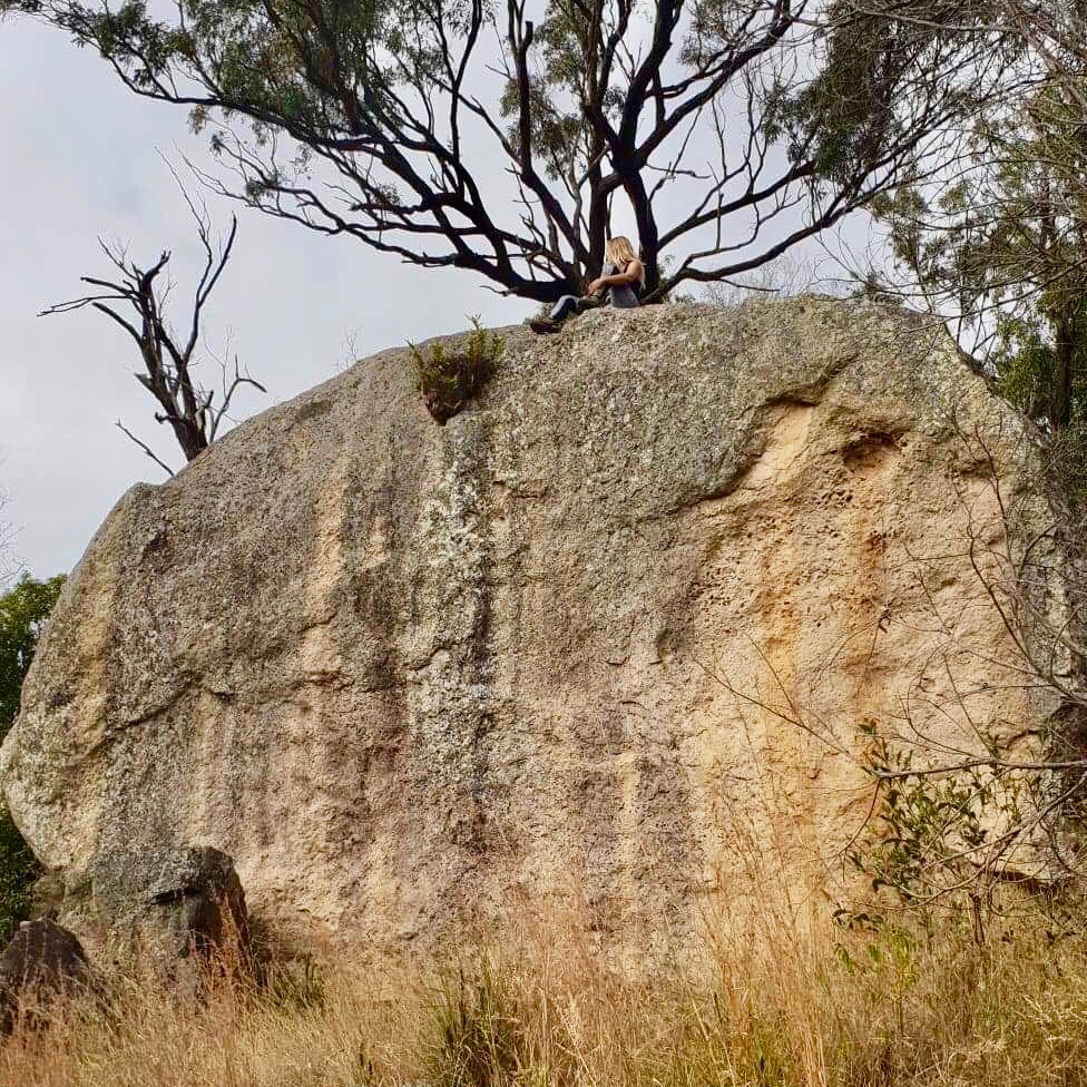 Hiking Guide Mount Walsh, Queensland