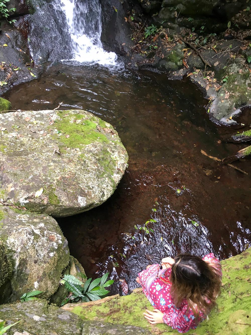 Meditating Toolona Creek Falls Hike Lamington National Park