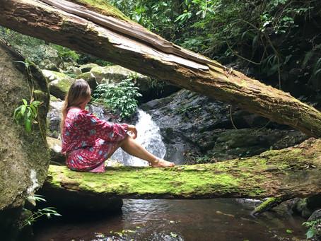 Hiking Toolona Falls Circuit: Endless Waterfalls and Swim Spots!