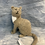 Thumbnail: Knitted Cats