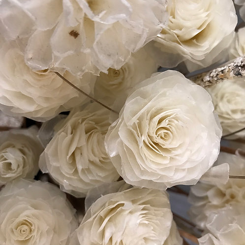 Fish Scale Roses (small)