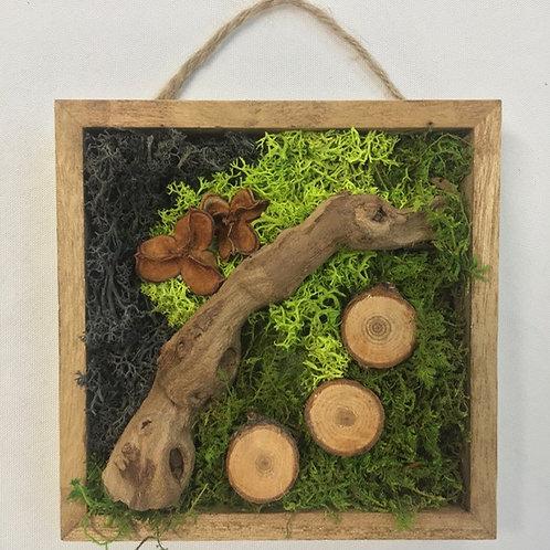 Mini Moss Art with Grapevine