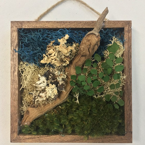 Mini Moss Art with Maidenhair Fern