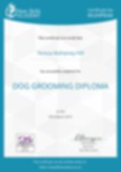 certificate dog grooming.jpg