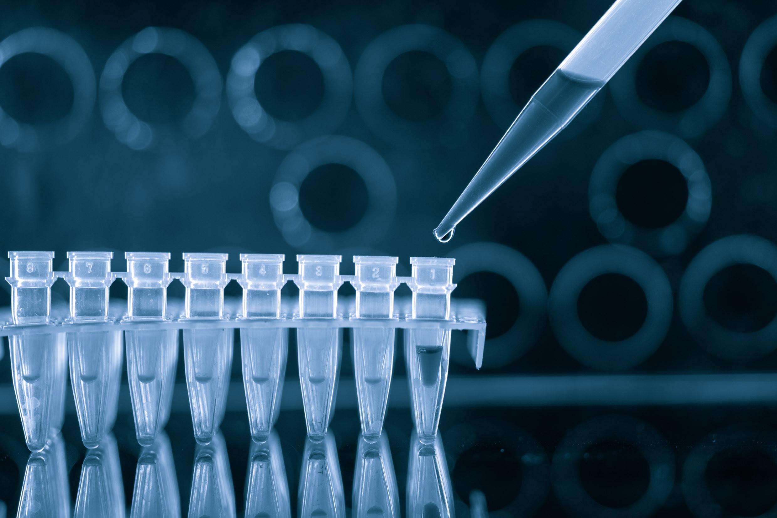 SAME DAY PCR SURVEILLANCE TESTING