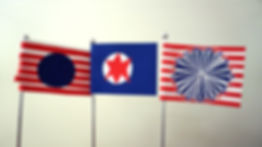 participant flags2.jpg