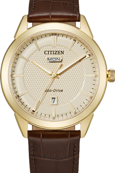 Corso : Citizen Eco-Drive Men's Solar Watch With Leather Band