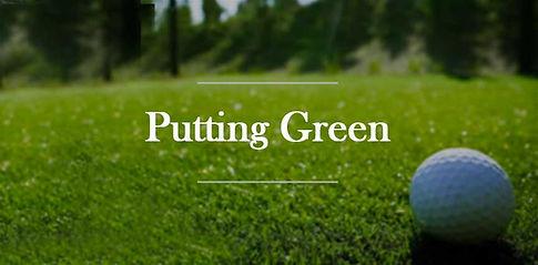 Putting Green bucks mercer hunterdon montgomery county pa