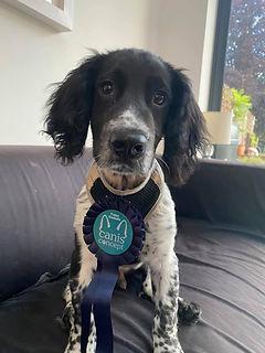 Loki graduate.jpeg