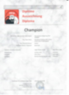 Diplom_Champion_Dancing Queen of BH_18.j