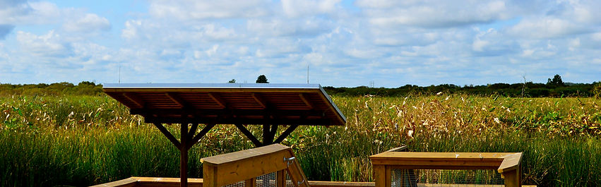 Sweetwater Wetlands Park; Gainseville parks; Alachua County parks