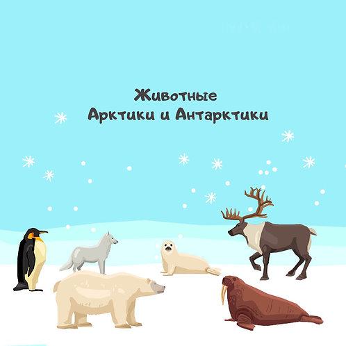 Животные Арктики и Антарктики (Познаём мир)