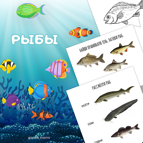 Рыбы (комплект заданий, версия для печати)