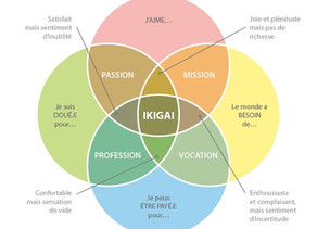 INTROSPECTION PERSONNELLE : L'IKIGAI 💭