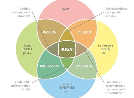 INTROSPECTION PERSONNELLE : L'IKIGAI 💭