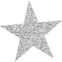 Silver Sparkly Star.jpg