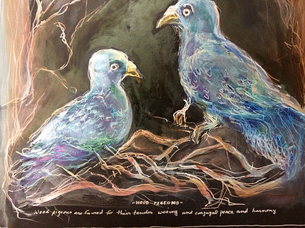 ordinary wood pigeons.jpg