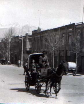 horse-an-carriage for sos.jpg