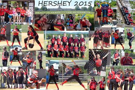 2015 12U Hershey Collage.jpg