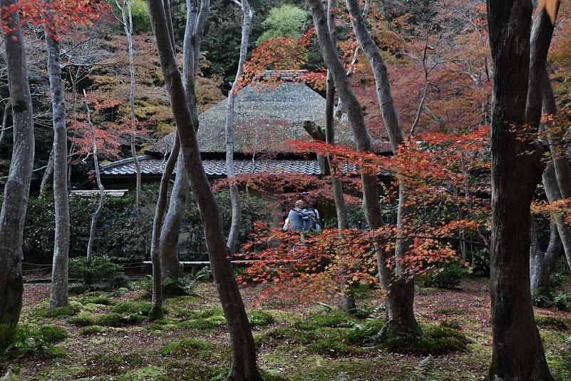 Goiji Temple