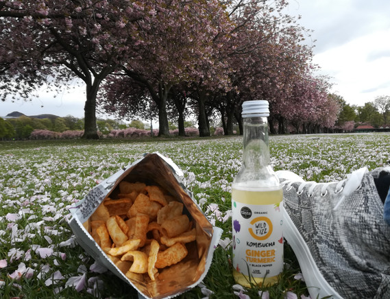 picnic at The Meadows