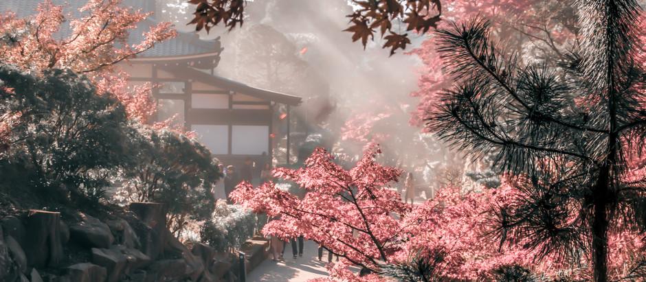 JAPAN, LAND OF THE RISING SUN