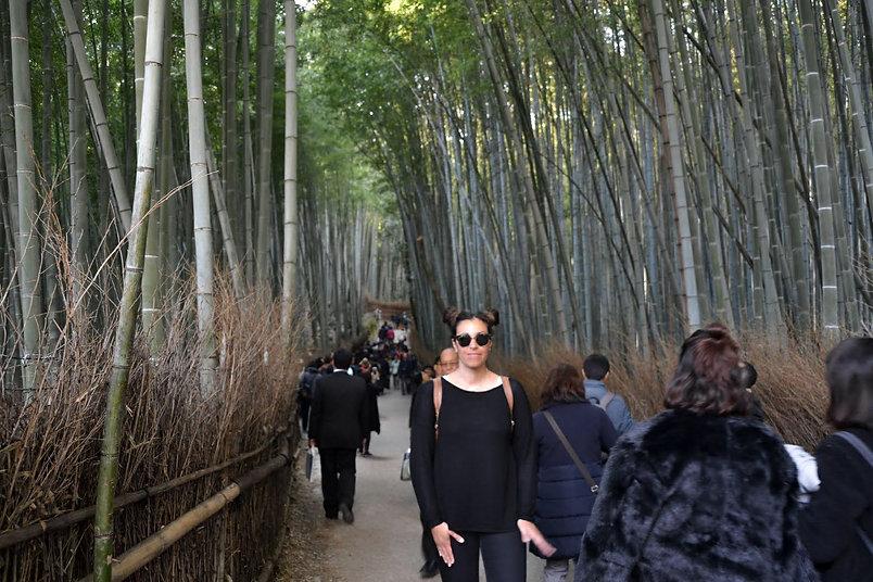 Bambo grove