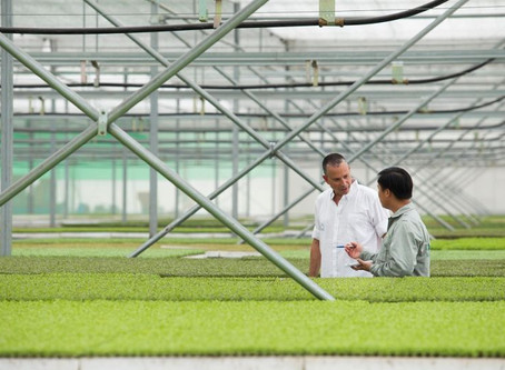 With Israeli tech, Vingroup goes green