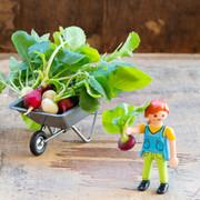 micro-radishes