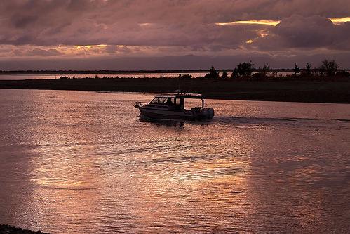 _DSF3946 Early Morning Fishing w.jpg