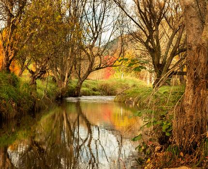 Ngatimoti Autumn