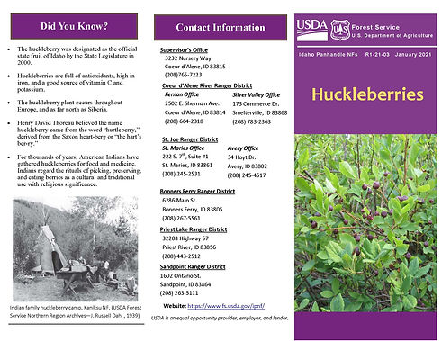 2021_07_13_Huckleberry_IPNF_Page_1.jpg
