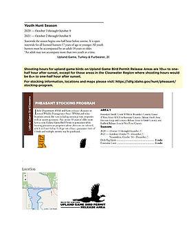 Pheasant_Page_1.jpg